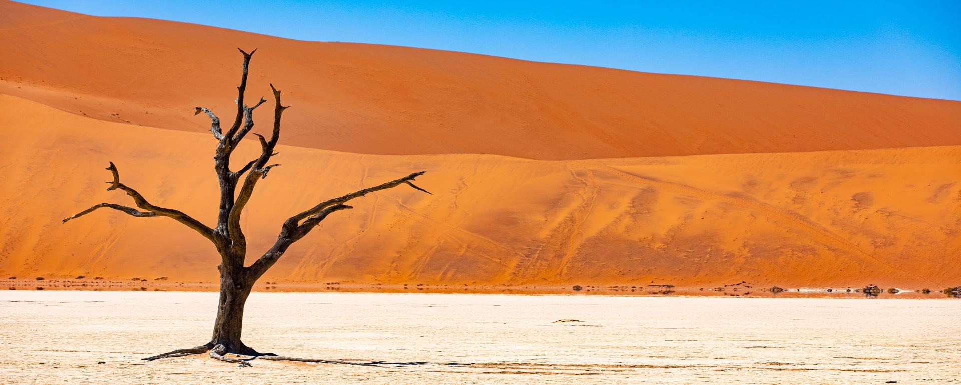 Namibie 2021